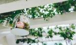 caribbean-wedding-08-1280x709
