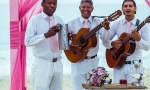 caribbean-wedding-info_44