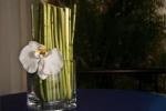 Украшение свадебного стола, свадьба в Доминикане