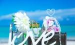 caribbean-wedding-info-02