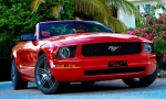 red-mustang_02