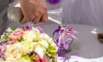 svadba-i-progulka-na-yahte-v-dominikanskoy-respublike-09