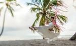 wedding-in-dominican-republic-46
