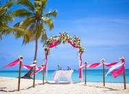 Новая свадьба в ярко-розовом!