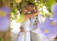 Свадьба 12 ноября 2012