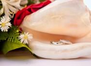 Пополнение портфолио. Романтическая свадьба Людмилы и Сергея в красном цвете