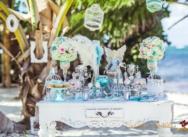 Свадьба в цвете Tiffany и розовый {Анастасия и Александр}